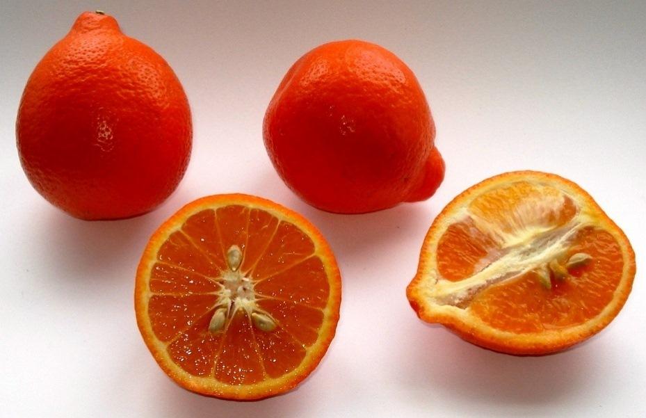 Откуда    в Саранск везут  b самые сладкие мандарины  b