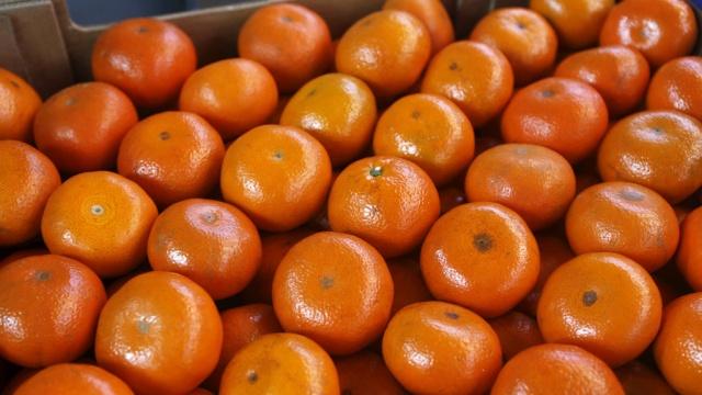 Откуда    в Саранск везут  b самые сладкие мандарины  b  Сирия