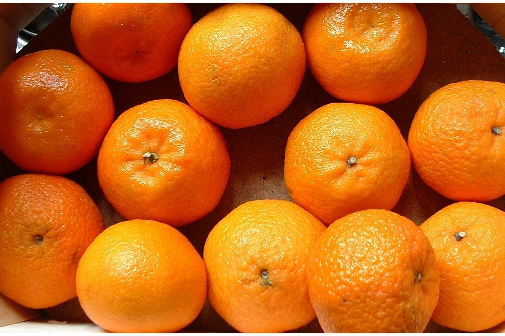Откуда    в Саранск везут  b самые сладкие мандарины  b  Турция