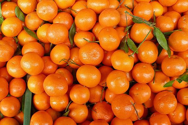 Откуда    в Саранск везут  b самые сладкие мандарины  b  ЮАР