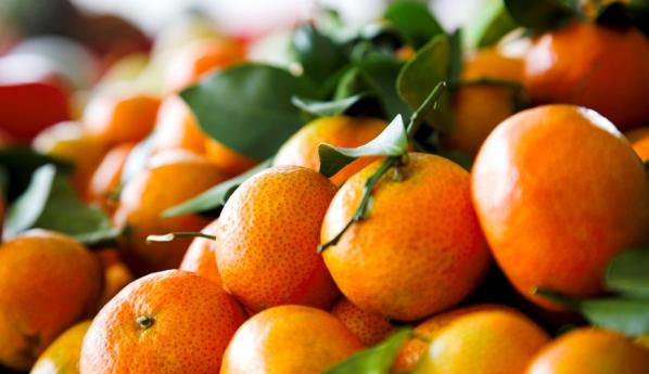 Откуда    в Саранск везут  b самые сладкие мандарины  b  абхазия
