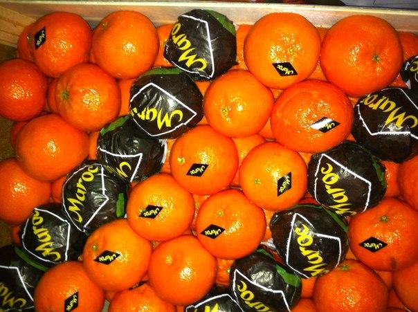 Откуда    в Саранск везут  b самые сладкие мандарины  b  марокко